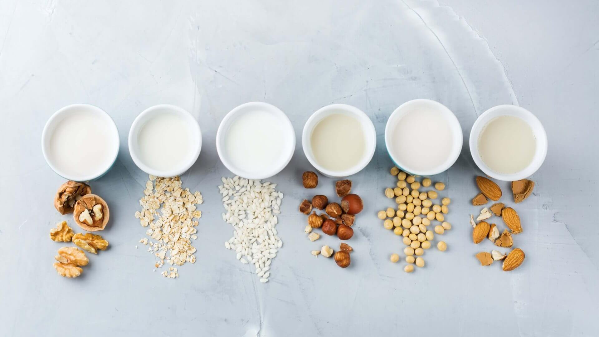 Sourcing Best Plant Protein Based on Application Needs