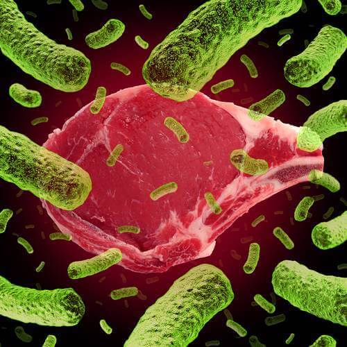 CytoGuard Lauric Arginate Antimicrobials Achieve 4 Log Reduction In Combating Salmonella